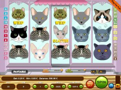 Cats slotsgames77.com Wirex Games 1/5