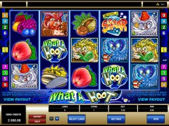What A Hoot slotsgames77.com Microgaming 1/5