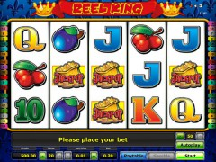Reel king slotsgames77.com Greentube 1/5