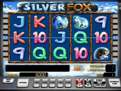 Silver Fox slotsgames77.com Greentube 1/5